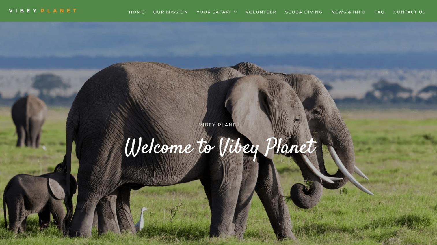 website portfolio vibey planet